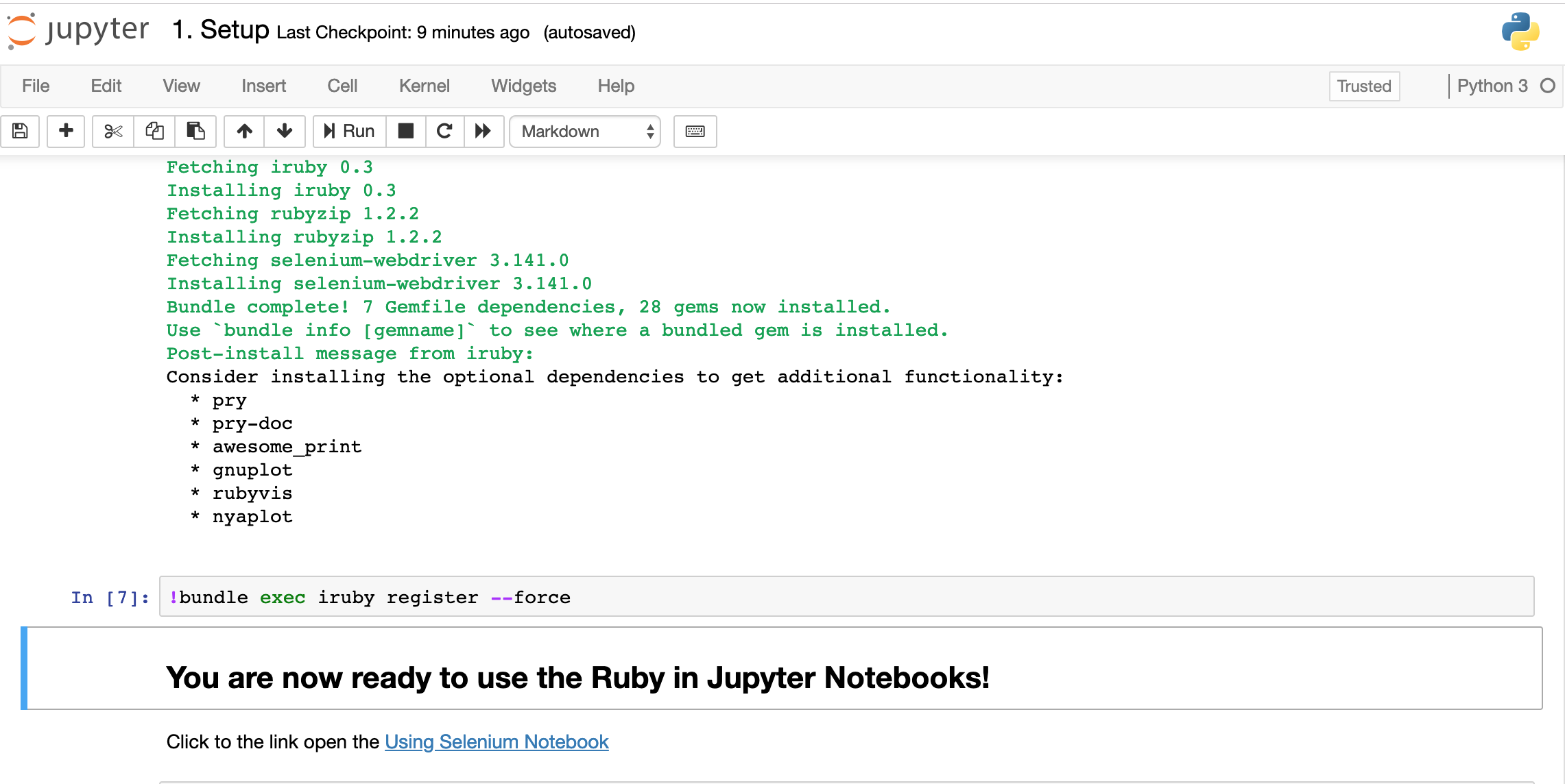 Getting Started Using Jupyter Notebooks with Selenium and Ruby