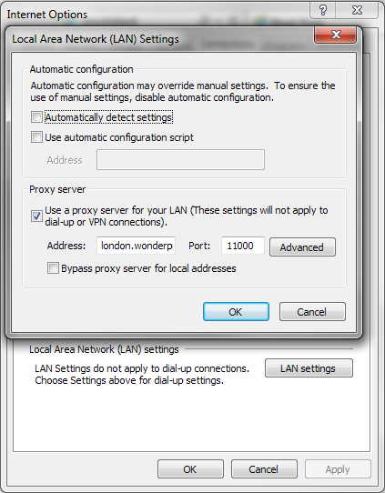 Preview of Microsoft Windows LAN settings window